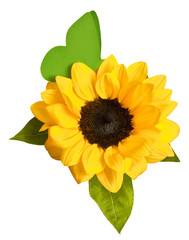 Shiny yellow sunflower with green leaves and paper butterfly