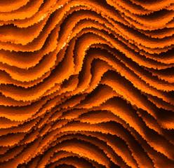Square vivid orange business crystal crumpled paper presentation