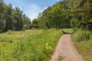 Nature around Strausberg nearby Berlin