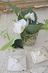 Wall Mural - Antiques and flower