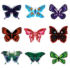 Nine different butterflies, isolated on white background