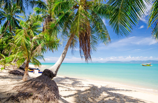 Invitation to dream and relax: Holidays on dream island: Tropical Chaweng Beach on Koh Samui :)