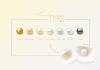 Gorgeous round, smooth, shiny clam pearl types. Beautiful pearl collection with two clam sea shells