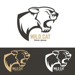 puma head. Wild cat.