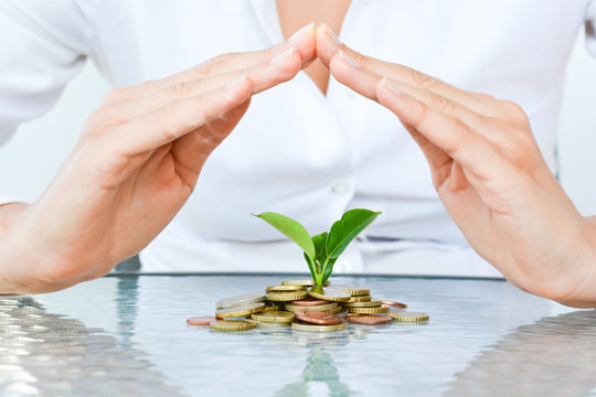Protecting family money savings from risk investment concept