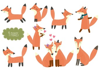 Cute foxes collection