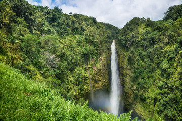 Akaka Falls State Park on Big Island, Hawaii