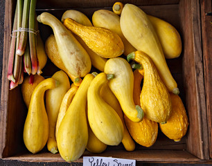 Fresh yellow squash in a wooden box at a local farmers market.