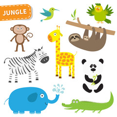 Cute jungle animal set. Cute cartoon character. Colibri, parrot, monkey, alligator, giraffe, sloth , zebra, panda, elephant. Baby collection. White background. Isolated. Flat design