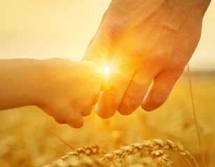 Hands of father and daughter on sun