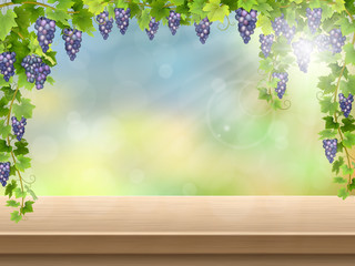 Vineyard with fresh grapes on empty wooden deck table. Vector background for presentation wine.