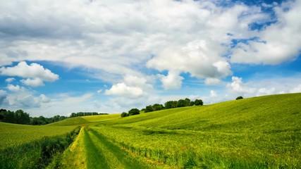 Fotoväggar - Timelapse Video von grünen Feldern und ziehenden weißen Wolken