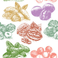Vector illustration colorful seamless pattern with nuts