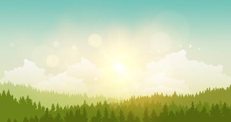 vector illustration of green landscape of sunny morning.