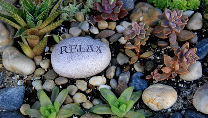 Rock garden with rocks and plants, one stone reading the word 'relax.' Wall mural