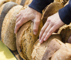 Hands taking organic bread