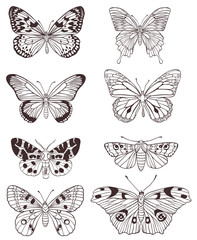 Hand drawn butterflies