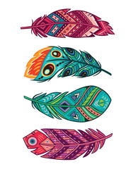 Vector set of colored ornate decorative feathers