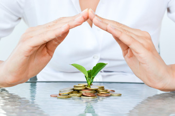 Businesswoman hands covering a pile of coins with growing plant suggesting economy protection