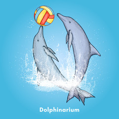 Two beautiful dolphin playing with a ball