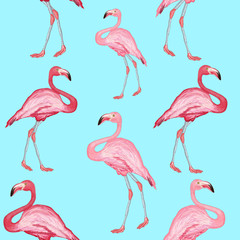 Door stickers Flamingo Flamingo pattern beautiful bird flamingos on a blue background