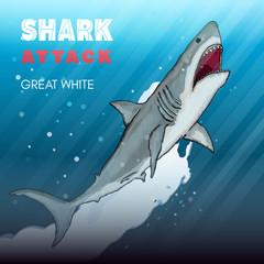 Shark attack great white shark underwater attack