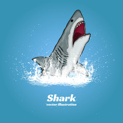 Great white shark jumping out of the water t-shirt print vector