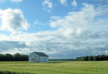A small grey barn in a farmer's field.