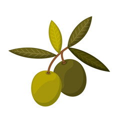 olive seeds isolated icon design, vector illustration  graphic