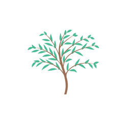 The thin trunk of the tree with leaves logo. Forest and park. Elegant design.