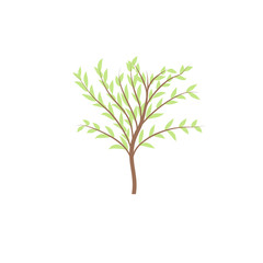 The thin trunk of the tree with leaves vector logo. Forest and park.