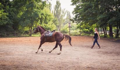 Молодая девушка жокей и скаковая лошадь