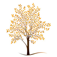 Autumn tree with leaves on white background