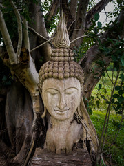 Ancient wooden Buddha statue head cracked and burned on bodhi tree background in hermitage at northern of thailan
