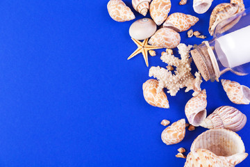 Colorful marine items - seashells, starfish and bottle with note on a blue background. Top view with copyspace.