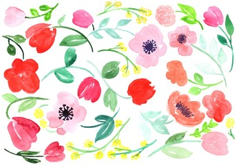 Hand drawn watercolor roses, leaves and abstract flowers isolated on a white background