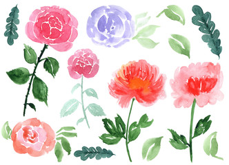 Hand drawn watercolor roses and leaves isolated on a white background