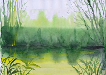 Watercolor painting of green misty pond surrounded by weed, grass and trees. Wet style.