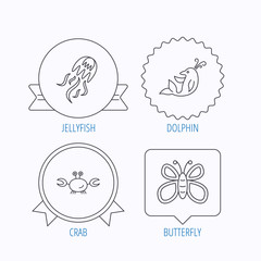 Jellyfish, crab and dolphin icons.