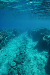 Underwater path carved by the swell into the reef on the ocean floor, Pacific ocean, French Polynesia