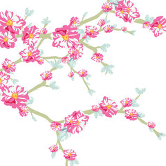 Vector illustration blooming flowers on tree branch in watercolor technique. Spring Time flowers background