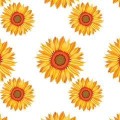 Sunflower Vector pattern background