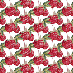 Fresh Raspberry Vector pattern background. Raspberry watercolor technique