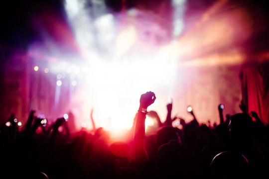People partying at a concert