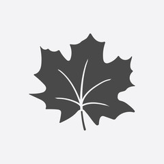 Maple Leaf vector icon in black simple style for web