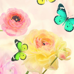 Colorful beautiful flowers and butterflies flying. Sweet blurred gentle buttercups in the background. Summertime ( springtime) nature and wildlife abstract background