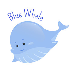 Blue whale isolated on white background.