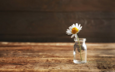 Healing chamomile flower in small glass bottle on brown wooden background
