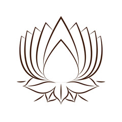 lotus flower drawing isolated icon design, vector illustration  graphic