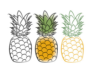 Three pineapple on a white background